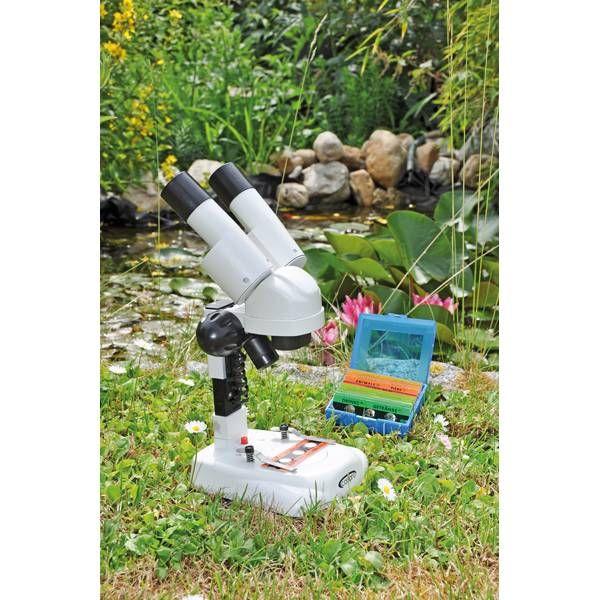 Mikroskop Zwei Augen